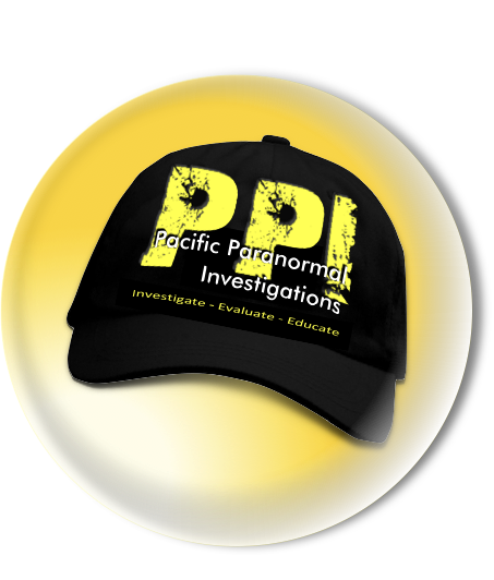 about ppi team ppi icon